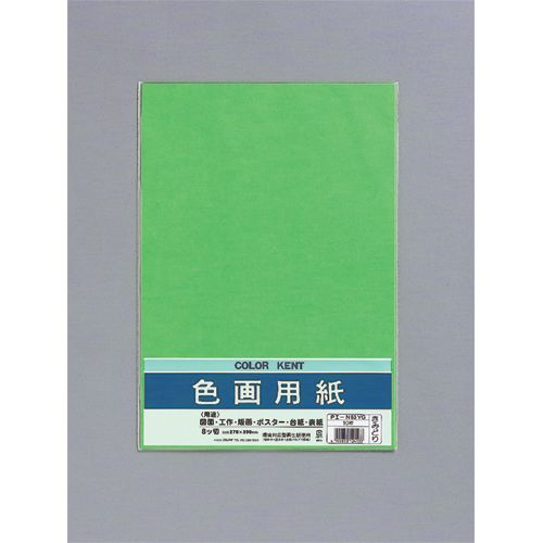 色画用紙 N833 きみどり 八つ切り 10枚 PエーN83YG 4パック
