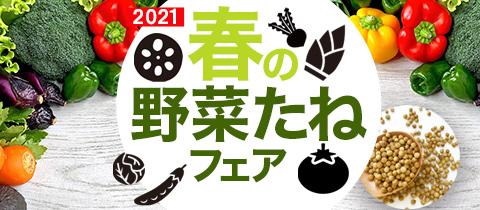 春の野菜フェア